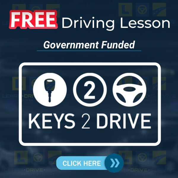 Free Driving Lesson - Learn Drive Survive